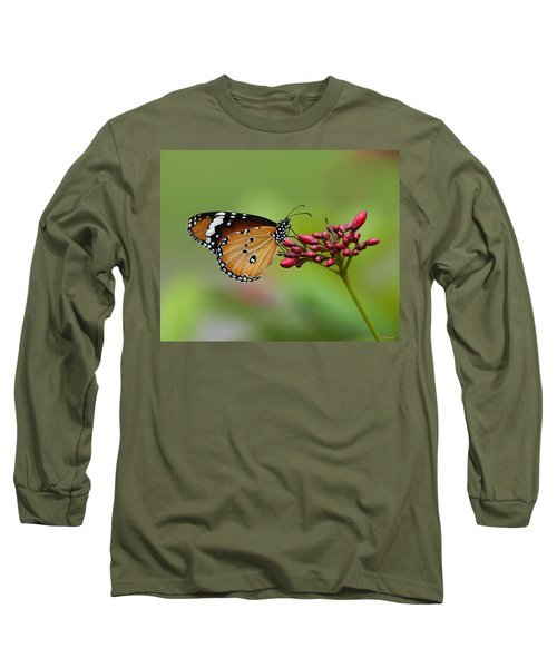 Plain Tiger Or African Monarch Butterfly Dthn0008 Long Sleeve T-Shirt