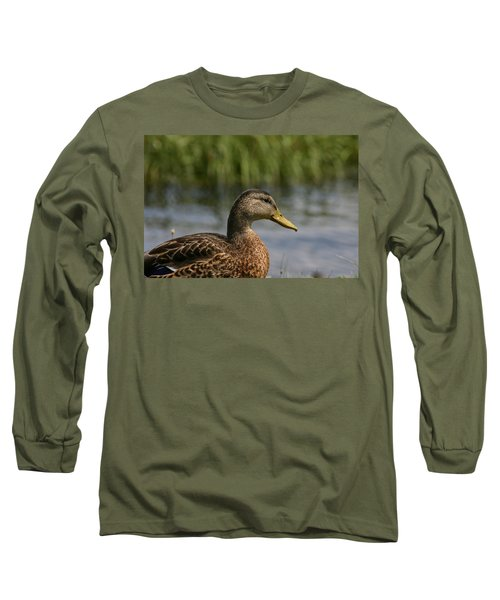 Long Sleeve T-Shirt featuring the photograph Pondering A Swim by Denyse Duhaime