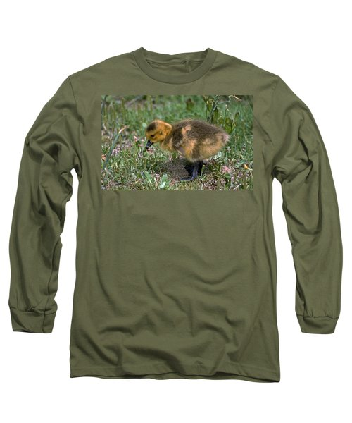 Puff Of Feathers Long Sleeve T-Shirt