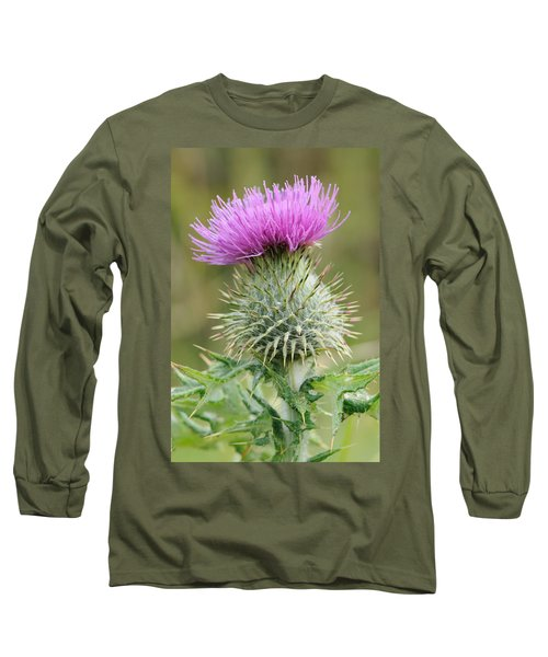 Purple Thistle Long Sleeve T-Shirt by Jeremy Voisey