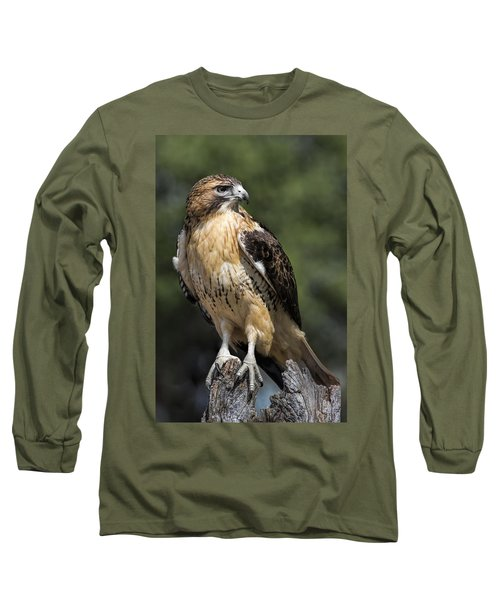 Red Tailed Hawk Long Sleeve T-Shirt