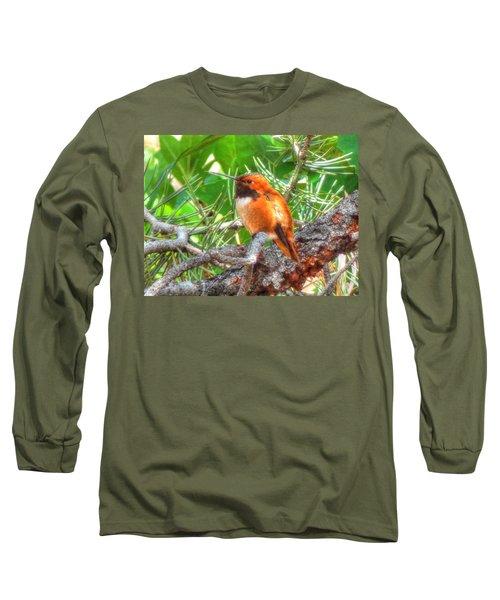 Redheaded Hummingbird II Long Sleeve T-Shirt