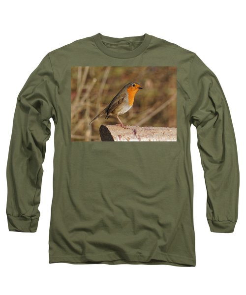 Robin On A Log -2 Long Sleeve T-Shirt