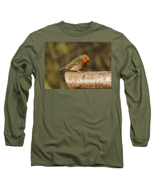 Robin On A Log Long Sleeve T-Shirt