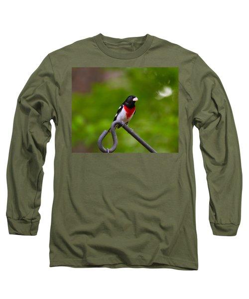 Rose Breasted Grosbeak Long Sleeve T-Shirt by Robert L Jackson