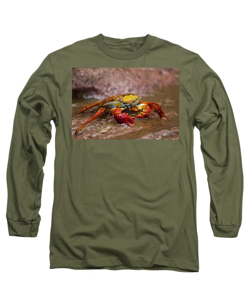Sally Lightfoot Feeding Long Sleeve T-Shirt