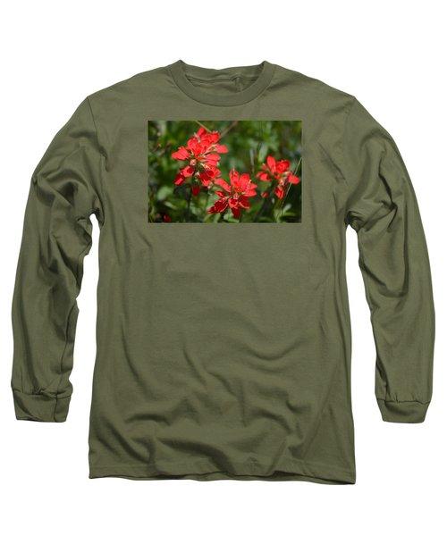 Scarlet Paintbrush. Texas Wildflowers. Castilleja_indivisa Long Sleeve T-Shirt by Connie Fox