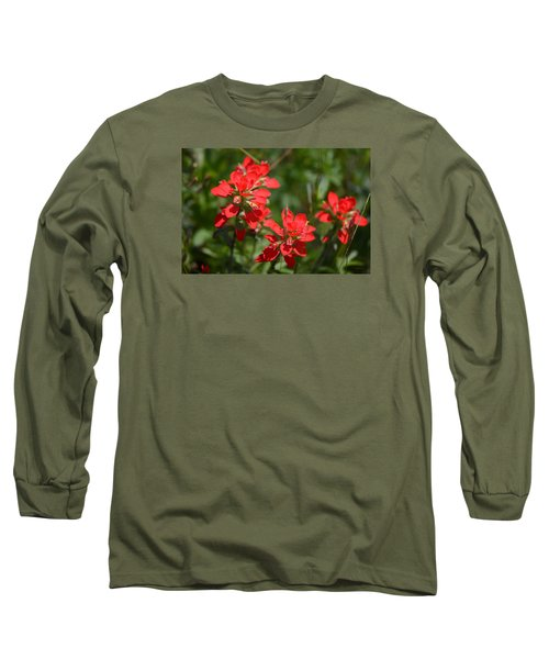 Scarlet Paintbrush. Texas Wildflowers. Castilleja_indivisa Long Sleeve T-Shirt