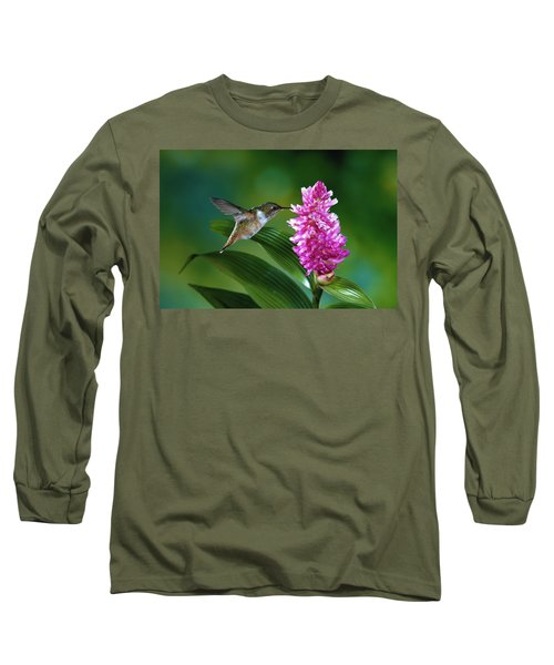 Scintillant Hummingbird Selasphorus Long Sleeve T-Shirt