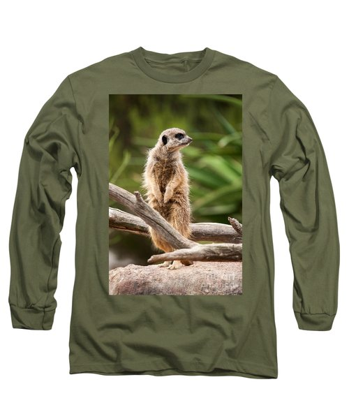 Sentry Duty Long Sleeve T-Shirt by Ray Warren