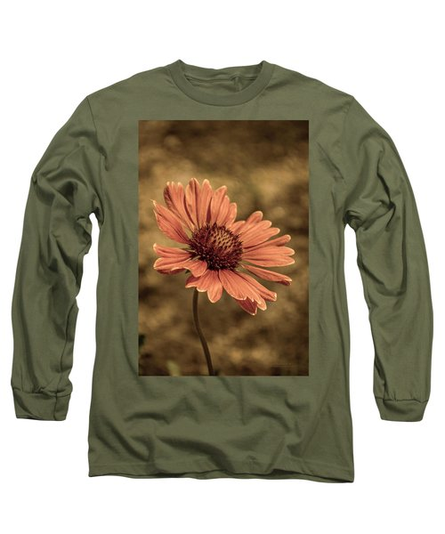Shining Long Sleeve T-Shirt
