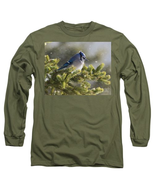 Snowy Day Blue Jay Long Sleeve T-Shirt