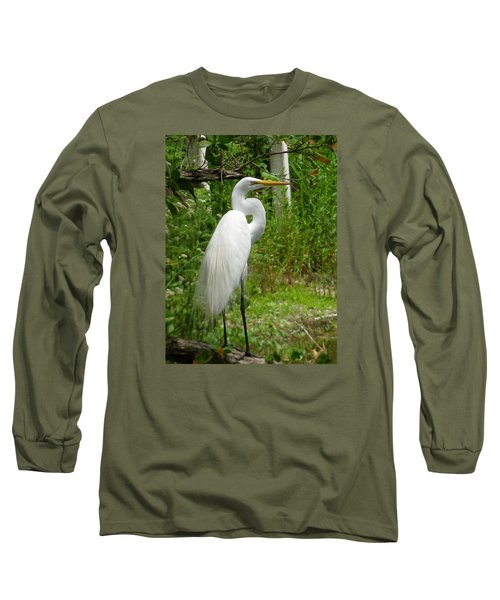 Snowy Egret Long Sleeve T-Shirt by Melinda Saminski