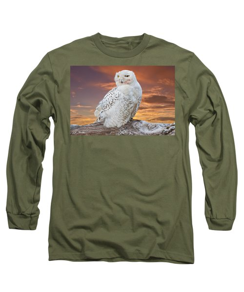 Snowy Owl Perched At Sunset Long Sleeve T-Shirt