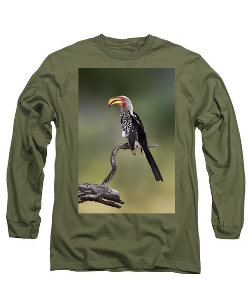 Southern Yellowbilled Hornbill Long Sleeve T-Shirt by Johan Swanepoel