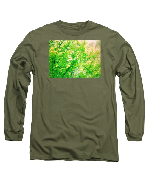 Spring Cypress Beauty Long Sleeve T-Shirt