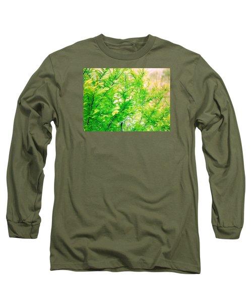 Spring Cypress Beauty Long Sleeve T-Shirt