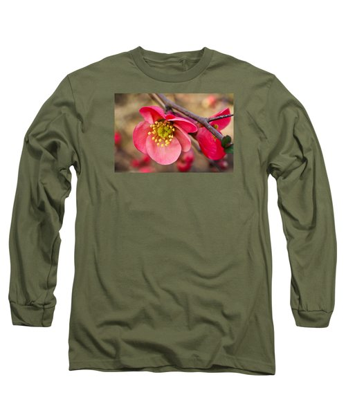Springtime Quince Long Sleeve T-Shirt by Julie Andel