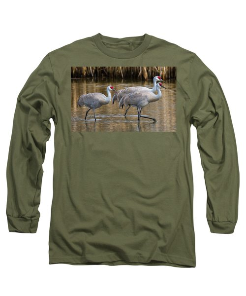 Steppin Out Long Sleeve T-Shirt by Randy Hall