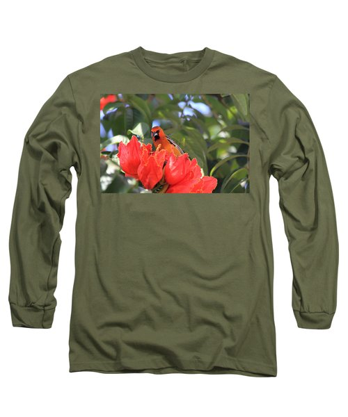 Streak-backed Oriole Long Sleeve T-Shirt