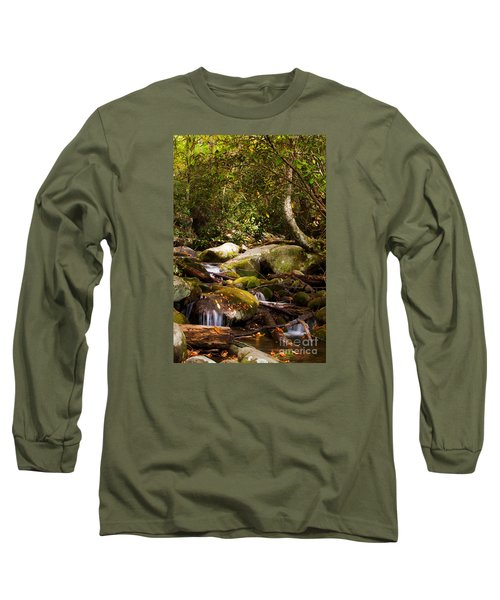 Stream At Roaring Fork Long Sleeve T-Shirt by Lena Auxier