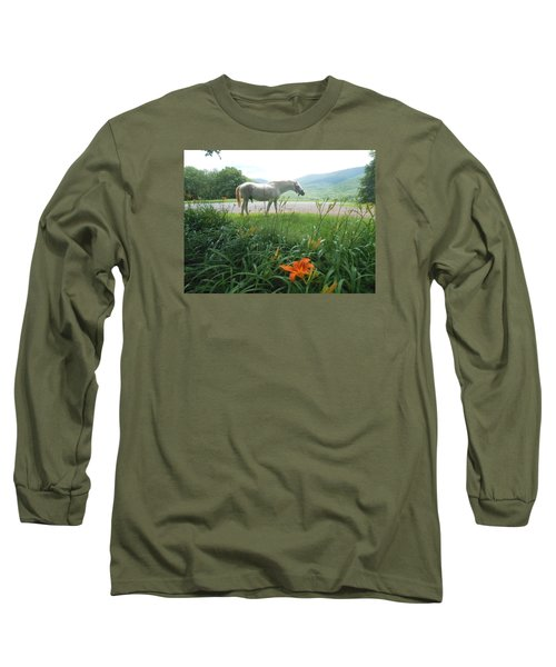 Summer Day Memories With The Paso Fino Stallion Long Sleeve T-Shirt