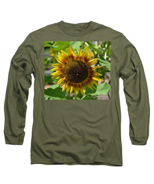 Sunflower Glory Long Sleeve T-Shirt