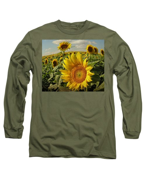 Kansas Sunflowers Long Sleeve T-Shirt by Chris Berry