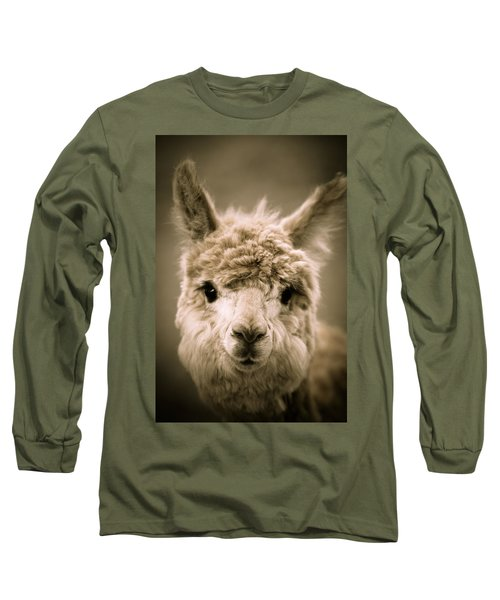 Sweet Alpaca Long Sleeve T-Shirt by Shane Holsclaw