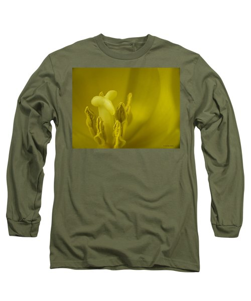 Long Sleeve T-Shirt featuring the photograph The Dance by Lucinda Walter