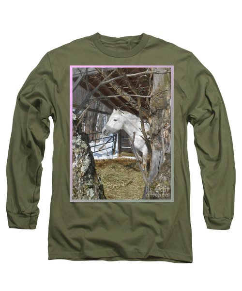 The Paso Fino Stallion At Home Long Sleeve T-Shirt by Patricia Keller