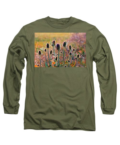Thistles With Sunset Light Long Sleeve T-Shirt