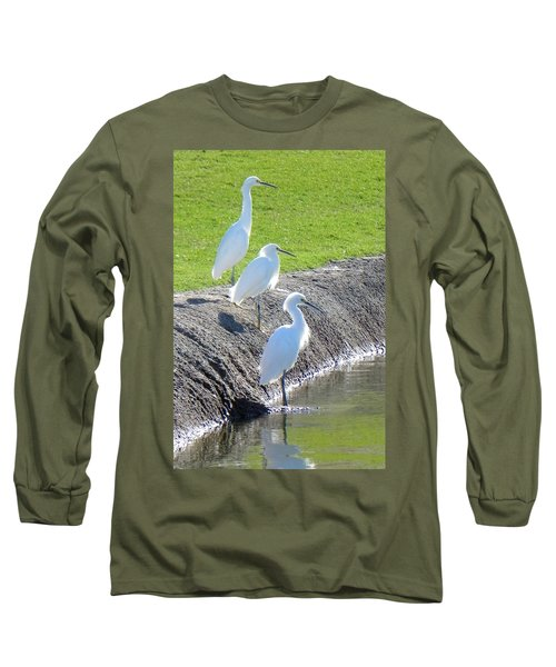 Long Sleeve T-Shirt featuring the photograph Three Stooges by Deb Halloran