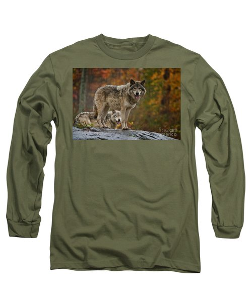 Timber Wolf Pictures 410 Long Sleeve T-Shirt
