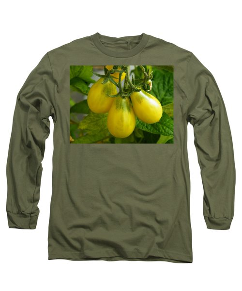 Tomato Triptych Long Sleeve T-Shirt by Brian Boyle