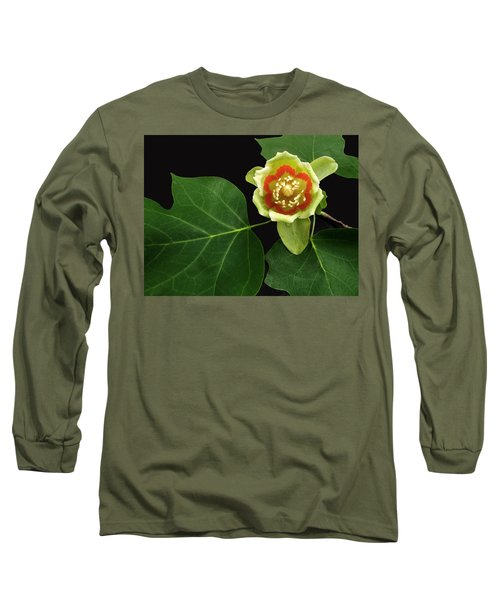 Tulip Bloom Long Sleeve T-Shirt by Don Spenner