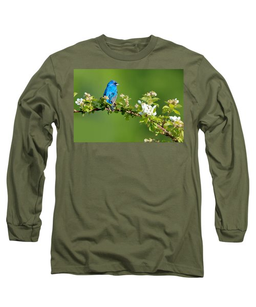 Vibrance Of Spring Long Sleeve T-Shirt
