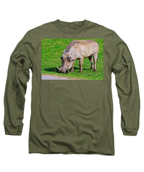 Warthog In Addo Elephant Park Near Port Elizabeth-south Africa  Long Sleeve T-Shirt