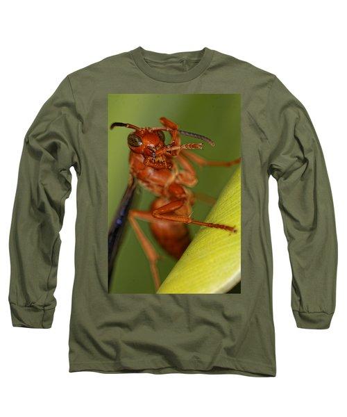 Wasp 3 Long Sleeve T-Shirt