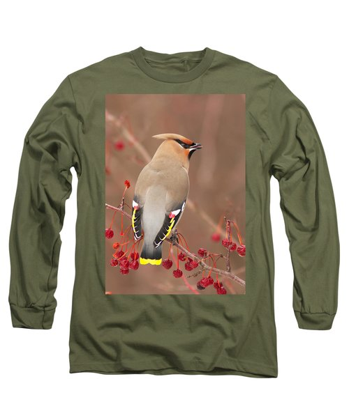Waxwing In Winter Long Sleeve T-Shirt by Mircea Costina Photography