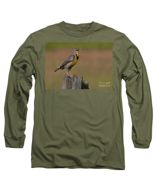 Western Meadowlark.. Long Sleeve T-Shirt