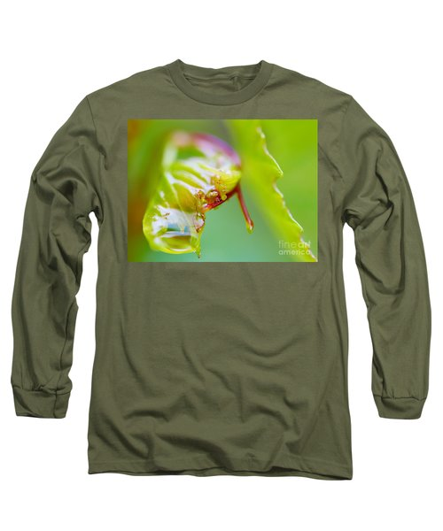 Wet Grape Leaf  Long Sleeve T-Shirt
