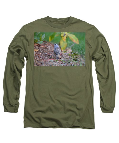 White-crowned Sparrow Long Sleeve T-Shirt by James Petersen