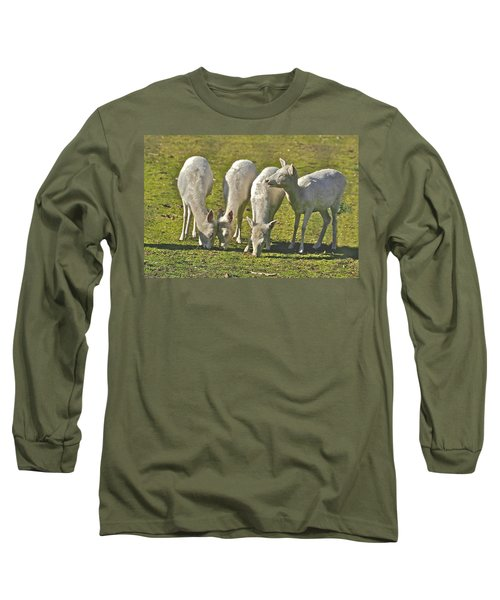 White Fallow Deer Mt Madonna County Park Long Sleeve T-Shirt