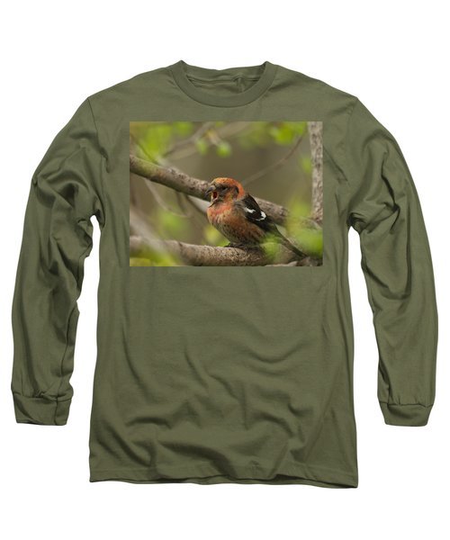 White-winged Crossbill Long Sleeve T-Shirt by James Peterson
