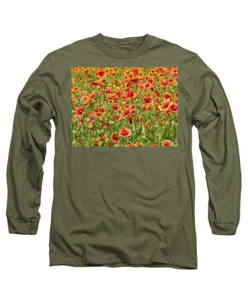 Long Sleeve T-Shirt featuring the photograph Wild Red Daisies #1 by Robert ONeil