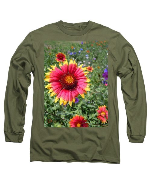 Long Sleeve T-Shirt featuring the photograph Wild Red Daisy #1 by Robert ONeil