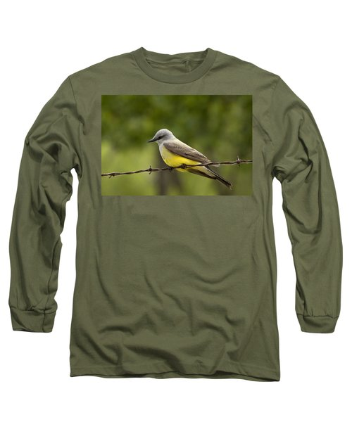 Yellow-bellied Fence-sitter Long Sleeve T-Shirt by Gary Holmes