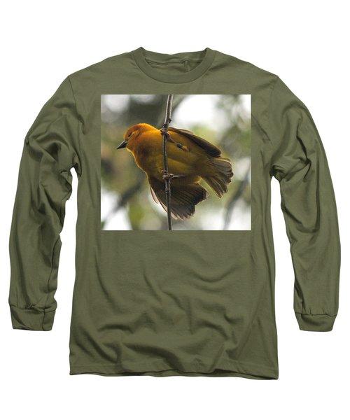 Yellow Bird Long Sleeve T-Shirt by Steve Archbold