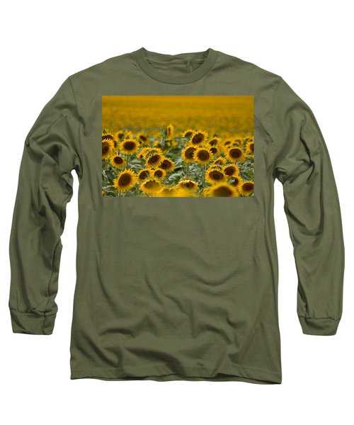 Long Sleeve T-Shirt featuring the photograph Yellow by Ronda Kimbrow
